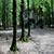 پارک جنگلی امام رضا (مکان دونفری)