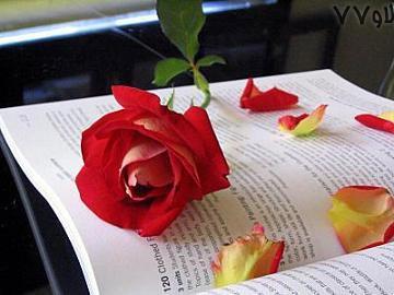 جملات عاشقانه,جملات رمانتیک,جملات عاشقانه آبان94,آبان94 جملات عاشقانه,جدیدترین متن های رمانتیک,رمانتیک ترین جمله عاشقانه - ابان94,متن های زیبای عاشقانه ابان94,